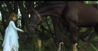 Άλογα - Ένα βίντεο αφιερωμένο σε αυτά τα όμορφα πλάσματα
