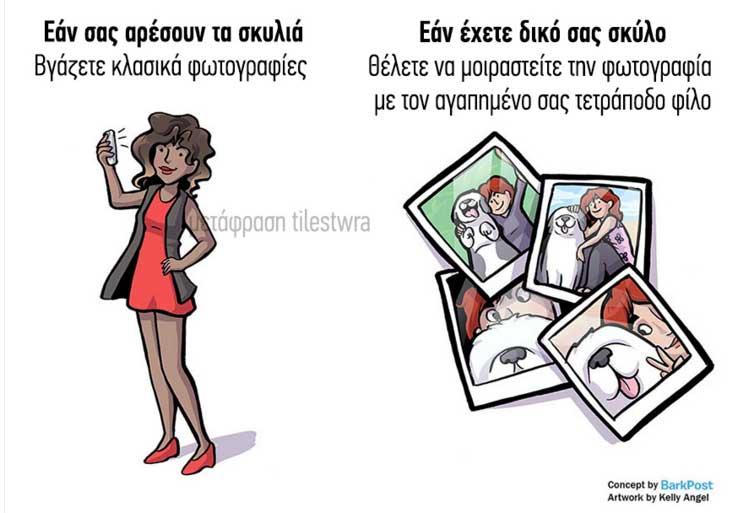 Διαφορές4
